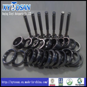 Engine Valve Seat for Nissan Td27/ Z24/ PE6/ Rd8/ SD25 pictures & photos