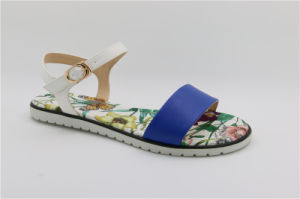 Fashion Women Comfort Sandals in Navy Blue pictures & photos