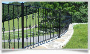Black Finish Security Metal Fence for Backyard pictures & photos