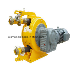 China Brand Peristaltic Pump with Rubber Hose pictures & photos