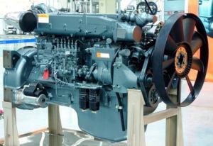 Sinotruk HOWO Truck Euro II 336HP Engine pictures & photos