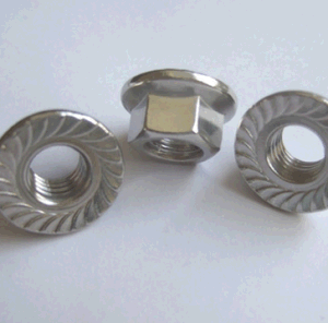 China Good Quality Hex Flange Nut Flange Manufacturer, 2016, New pictures & photos