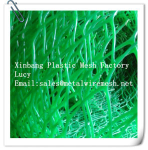 Green Color Hexagonal Hole Plastic Flat Wire Mesh pictures & photos