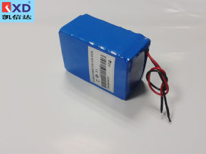 Kxd Li-ion Battery Pack 12V 20ah
