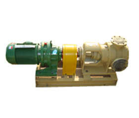 Nyp Stainless Steel Magnetic Pump for Polyols pictures & photos