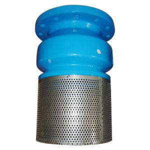 Cast Iron Foot Valve with Stainless Steel Screen pictures & photos