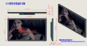 Big Size Wall Mounted Advertising Touch Display 50-Inch TFT Screen Advertising pictures & photos