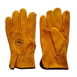 Cow Grain Leather Protective Hand Gloves for Driving pictures & photos