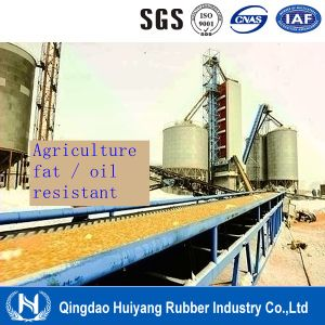Plant Fat Oil Resistant Rubber Conveyor Belt