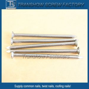 Galvanized Steel Smooth Shank Common Nails pictures & photos