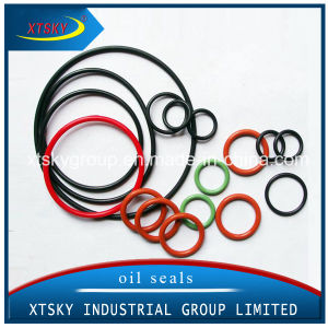 Xtsky High Quality Rubber Seal O-Rings pictures & photos