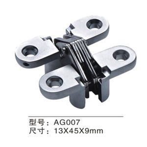 High Quality Zinc Alloy Concealed Door Hinge (AG007) pictures & photos