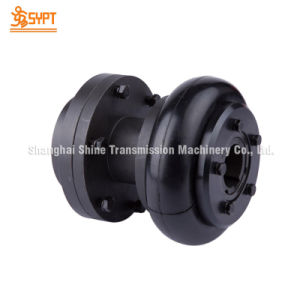F160 Flexible Tyre Coupling for Reducers pictures & photos