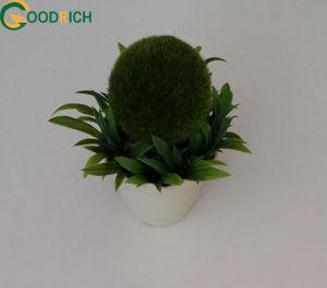 Mini Pot Flower Artificial Bonsai pictures & photos