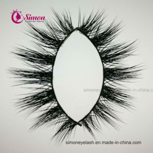 Natural Eyelashes for Eye Lashes Makeup pictures & photos