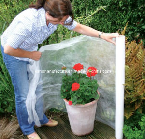 Flower Protection Cover (KM1221) pictures & photos