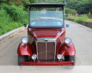 6 Seats Sightseeing Electric Car (LDG-LY6C01) pictures & photos