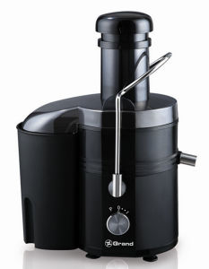 Geuwa Hand Held Electric Fruit Juicer pictures & photos
