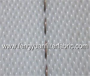 Anti-Static Polyester Weave Mesh pictures & photos
