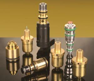 Auto A/C Compressor Control Valves for V5, Sanden, Denso, Delphi, Calsonic pictures & photos