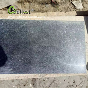 Flamed Black Quartzite Paving Stone Tile pictures & photos