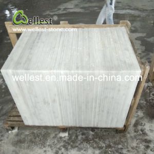 China White Marble Tile for Villa/House/Hotel Floor and Wall Cladding pictures & photos