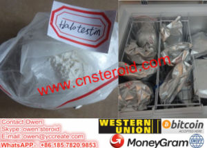 Halotestin Raw Powder Anabolic Steroid Supplements Bodybuilding Fluoxymesteron pictures & photos