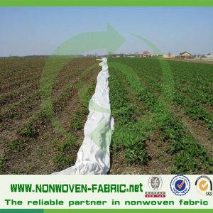 Environmental Protection Cover PP Non-Woven Fabric pictures & photos