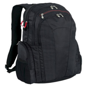 Business Laptop Backpack for Travel, Business Trip, School, Good Quality pictures & photos