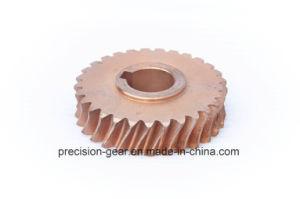 Brass Worm Wheel, Worm Gear