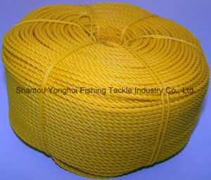 Yellow PE Rope pictures & photos