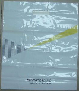 Branded LDPE Virgin Custom Printed Plastic Bags (FLD-8576) pictures & photos