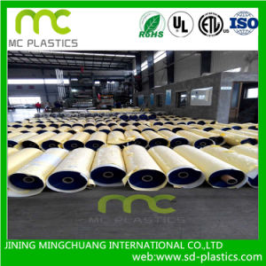 PVC Show Curtain/Printing/Bath Curtain Films pictures & photos
