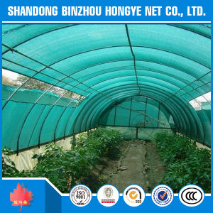 Plastic Net/ Sun Shade Netting/ Agricultural Shade Net pictures & photos
