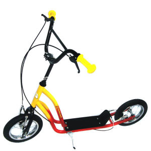 "12"" Steel Frame Kick Scooter (PB206) pictures & photos"