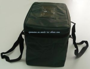 Foldable Light Waterproof Carrier out Ice Bag/ Cooler Bag pictures & photos