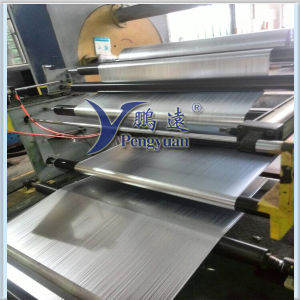 Reflective Film Metallized Polyester Coated PE pictures & photos