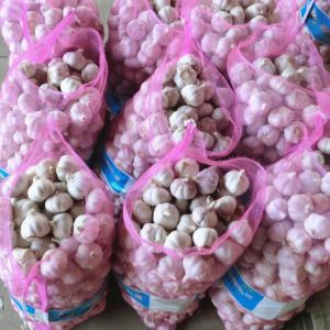 Fresh Normal White Garlic Packed in 10kg Mesh Bag pictures & photos
