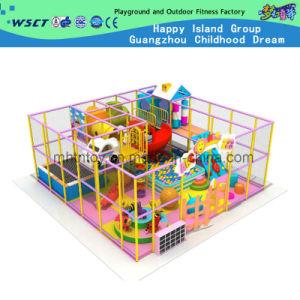 Amusement Indoor Playground Castle (H13-0927) pictures & photos