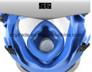 Silica Gel Full Face Gas Mask Facepiece Respirator Spraying Paint pictures & photos
