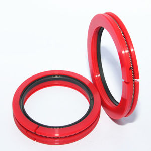 Customized Colorful Mould PU Seals pictures & photos