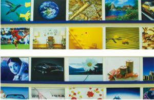 Outdoor Strong PE/PVDF Display Board/Aluminum Composite Panel (ACP) (ALB-006) pictures & photos