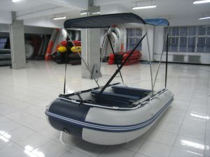 Fishing Boat for Fun with Canopy pictures & photos