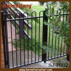 Aluminium Loop Top Pool Fencing for Garden and Balcony (SJ-F002) pictures & photos