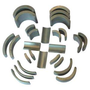 Segment Magnet pictures & photos