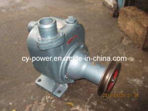 Engine Cooling Pump & Sea Water Cooling Pump pictures & photos