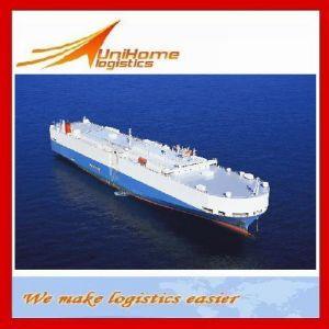 Competitive Sea Freight/Shipping Service From Foshan, Guangzhou, Shenzhen, Ningbo, Shanghai, Xiamen, Qingdao, Tianjin China to Oran/Algeria