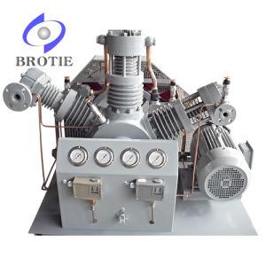Oil-Free Special Gas Compressor (BRC-SG) pictures & photos