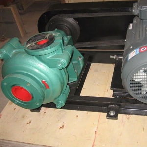 Low Price Hs Series Slurry Pump pictures & photos