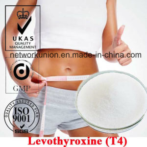 CAS 51-48-9 Steroids Powder Levothyroxine (L-Thyroxine/T4) for Fat Weight Loss pictures & photos